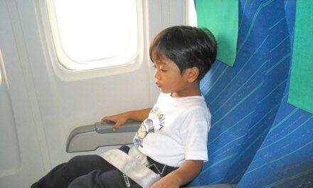 Jaki wózek jest odpowiedni do samolotu?